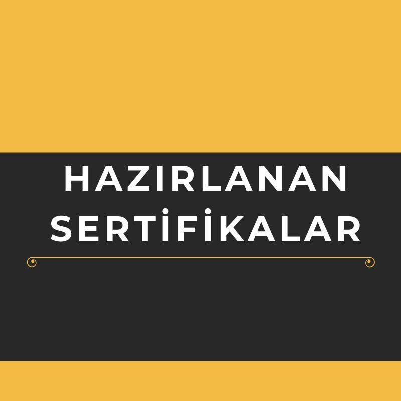 3 ŞUBAT TÜRKÇE YETERLİK SINAVI SONUÇLARI